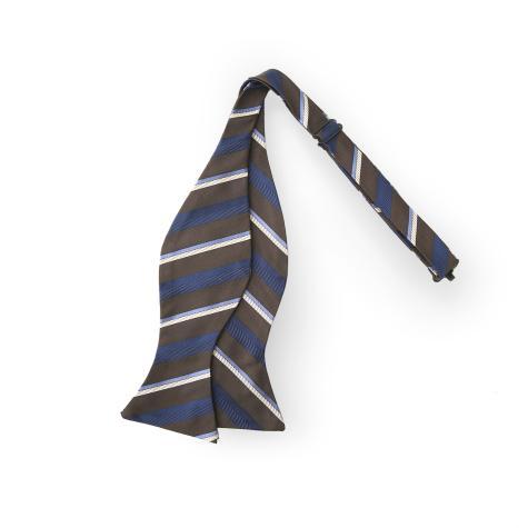 Bow Tie Bow Tie Xi